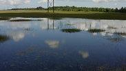Florida Everglades scenery