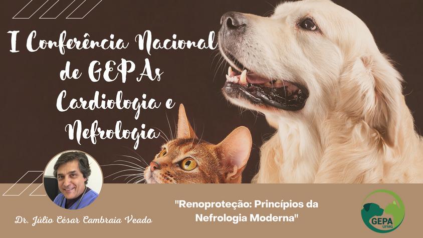 I Conferência Nacional de GEPAS´s - Nefrologia