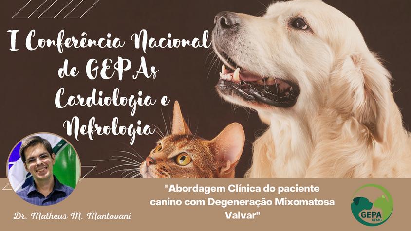 I Conferencia Nacional GEPA´s - Cardiologia