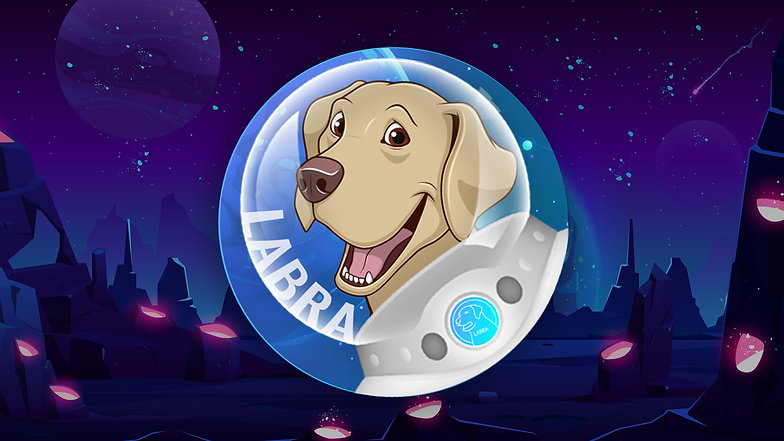 How To Buy Labra Coin   Official Tutorial