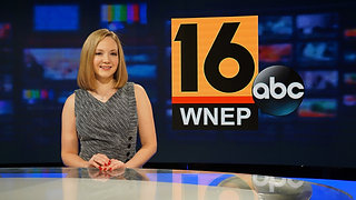 WNEP Reporting Work