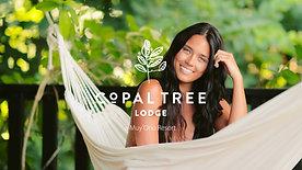 Copal Tree Lodge - Muy'Ono Resorts