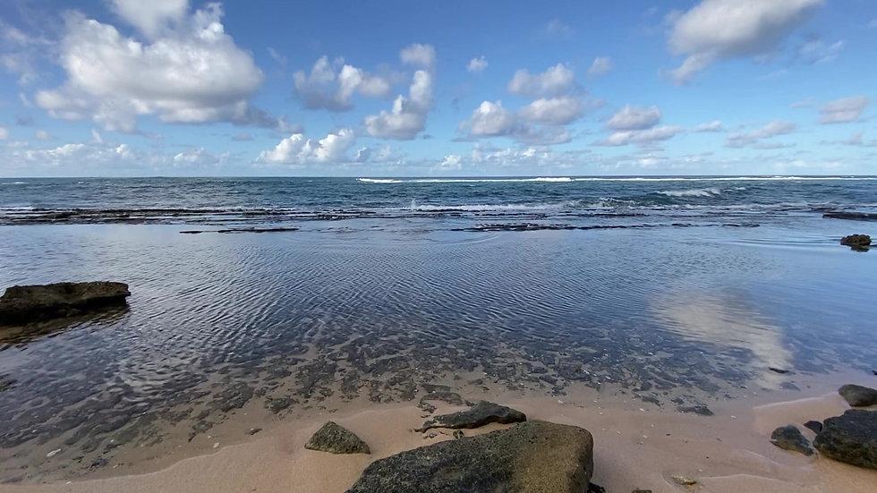 Rolling Ocean Waves