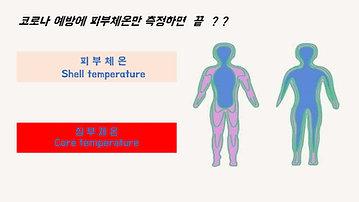 피부체온vs 코어체온