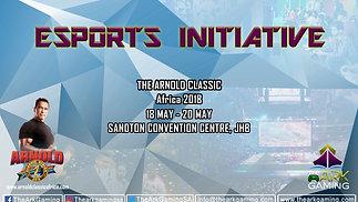 The Esports Initiative