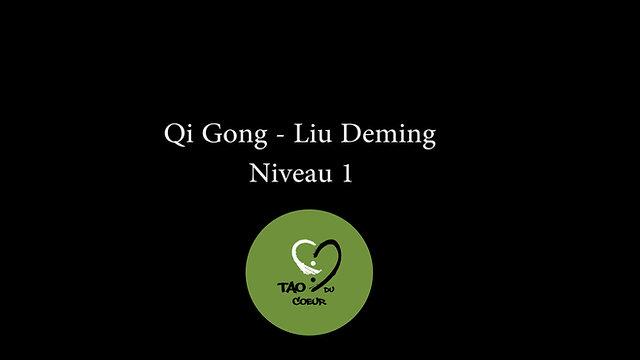 Qi Gong : Liu Deming