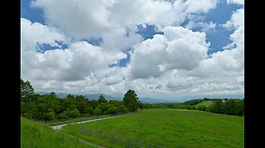調和する雲と牛, 清里にて   Harmonized movement of clouds and cows captured in the Kiyosato, Nagano Prefecture.
