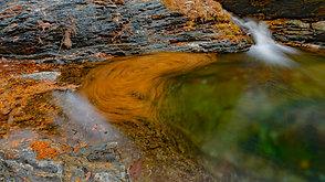 落ち葉の渦巻き  Spiral flows of fallen leaves.