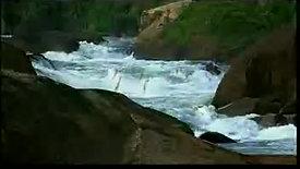 Jivanjor