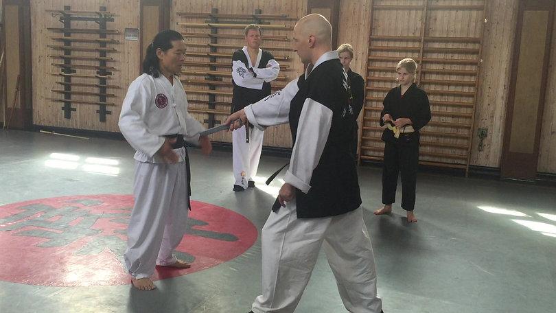 Grandmaster Choi, Sweden, July 2016