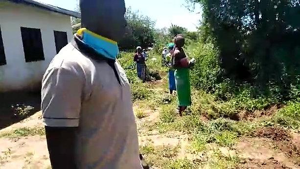 Afforestation - Kakunguu Primary School 2020