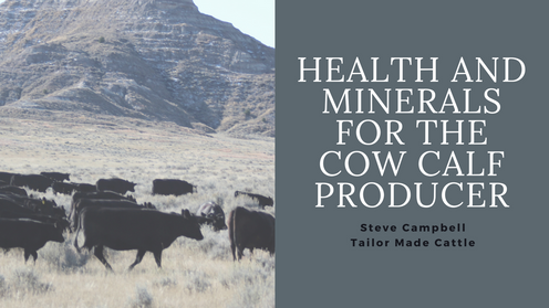 Health and Minerals for the Cow Calf Producer