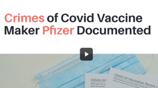 Anyone Need UnAfraid Attornies? Crimes Of Convid Vaxx Maker Pfizer Stop Being A Guinea Pig