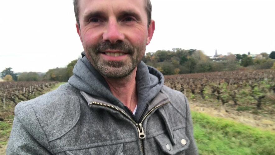 Balade autour des vignobles du muscadet