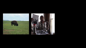 Dave Swallow Jr., War Camp #344 Pine Ridge Reservation .mov_1