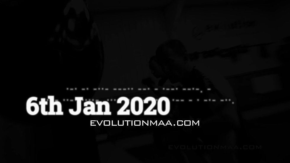 Evolution Martial Arts 2020