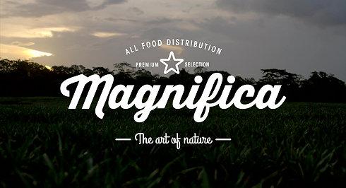 Magnifica Foods