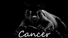 CANCER F mid feb