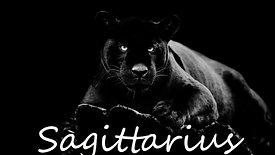 SAGITTARIUS F mid feb