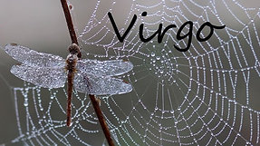 VIRGO - OMG! You're about to realize manifestation!!
