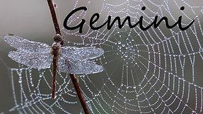 GEMINI - This is happening so FAST!!