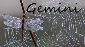 GEMINI - This is happening so FAST!!