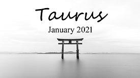 TAURUS Jan