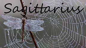 SAGITTARIUS - Transitioning toward your TWIN FLAME soul mate!!