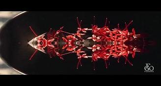 EGO-VIAGGIDEA_60 secondi_DEF