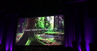 DoTERRA Convention in Amstersam