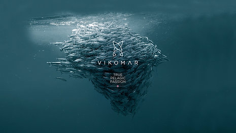 Vikomar