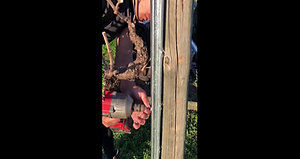 Organic Vineyard using Ocloc A 3 Screw holes ,to keep the post on place ,Shark tooth screws