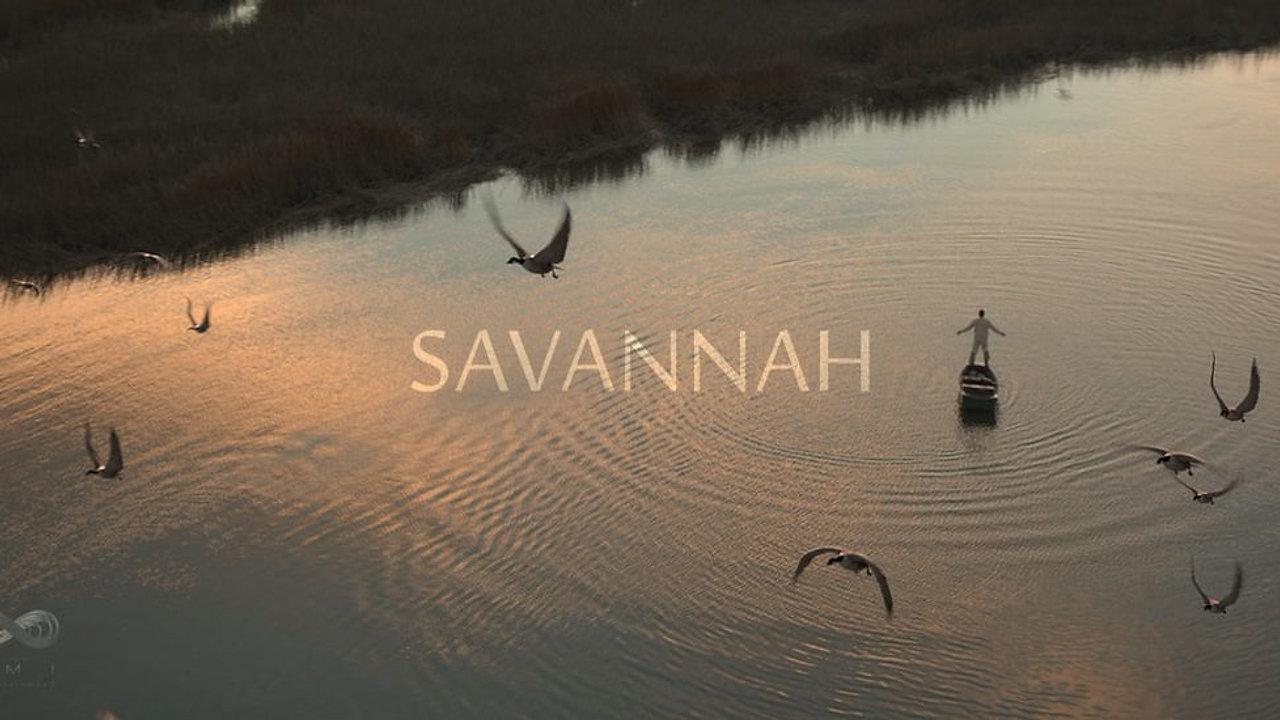SAVANNAH_Sandscope_Breakdown
