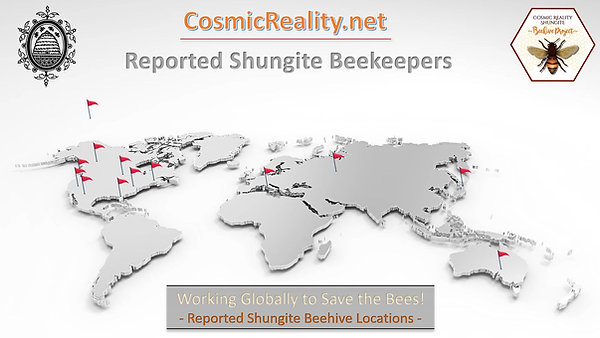 Shungite Beehives Working Globally