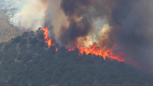 huge-forest-fire-burning-trees-on-mountain_EJtxD3AEQ