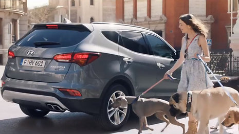 "Hyundai - ""SantaFe Confidence"""