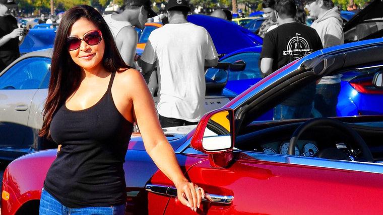 Automotive Hosting & Racing