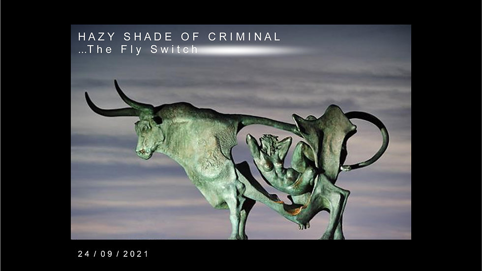 HAZY SHADE OF CRIMINAL...The Fly Switch...