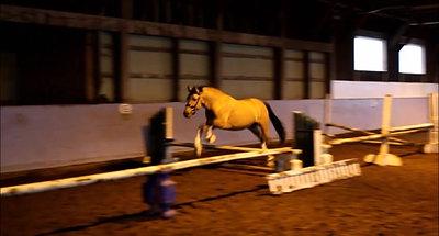 Dickie loose jump Oct 2018