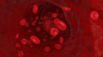 Red Blood Cells - Medical Animation Sample