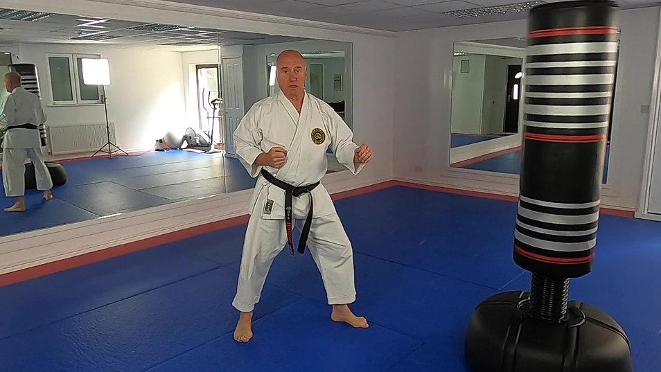 Beginners Karate Lesson 1