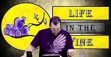 Life in the Vine 8 Second half