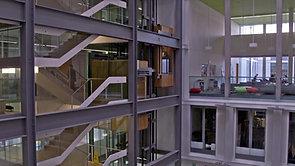 WHAT'S THE UNIVERSITY FOR?      Edinburgh University
