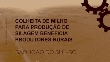 COLHEITA DE MILHO PARA PRODUÇÃO DE SILAGEM BENEFICIA PRODUTORES RURAIS.