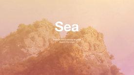 Projecte  Final  SEA