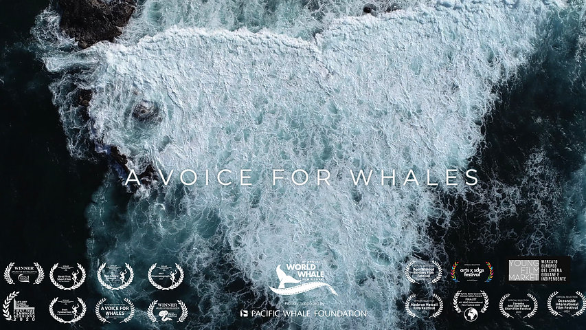 A Voice for Whales
