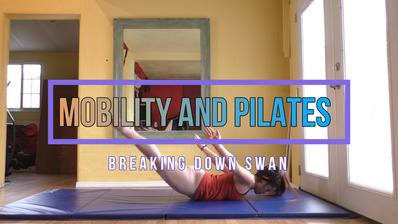 MOBILITY BREAKDOWN for SWAN