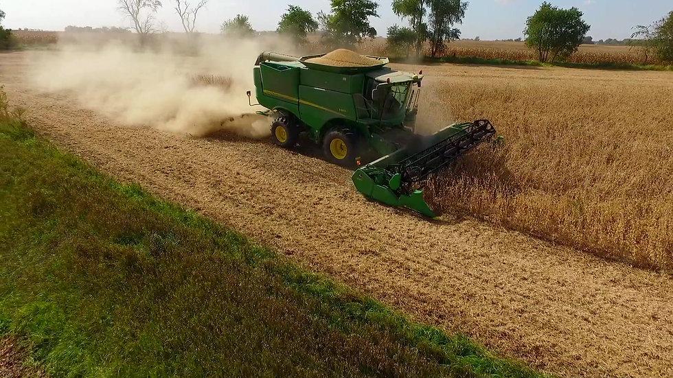 Harvest 2015