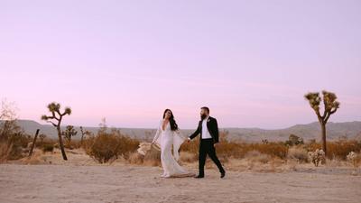 Nichole & Ryan's Wedding Trailer