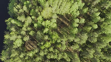 Drone kuvaa mökki